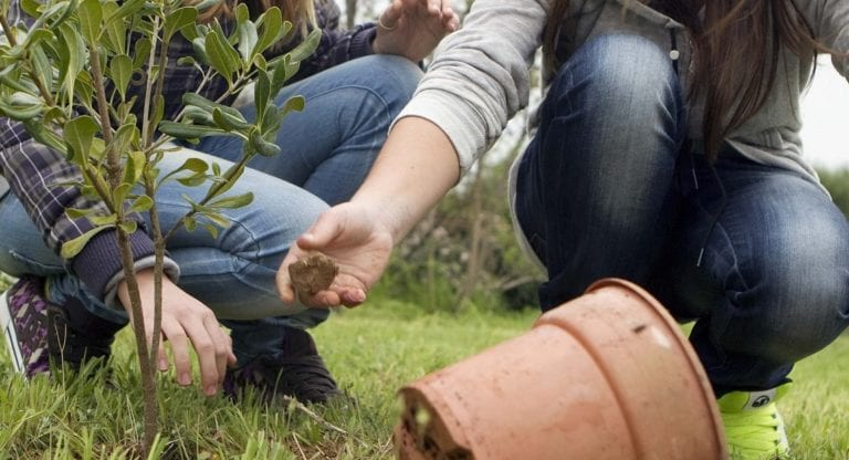 Η Παγκόσμια Ημέρα Περιβάλλοντος, 5 Ιουνίου.