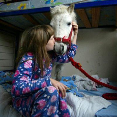 Η συμβολή της θεραπείας με ιπποειδή σε παιδιά με εγκεφαλική παράλυση.